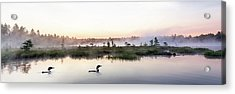 Serene Morning On The Lake Acrylic Print by Brent L Ander