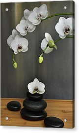 Acrylic Print featuring the photograph Serene Orchid by Terence Davis