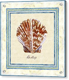 Serene Shores - Scallop Shell Acrylic Print by Audrey Jeanne Roberts