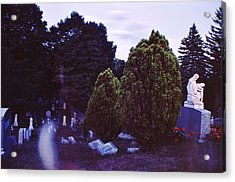 Serene Visitation Acrylic Print by Don Youngclaus