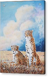 Acrylic Print featuring the painting Serengeti Strikes by DiDi Higginbotham
