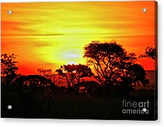 Serengeti Sunset Acrylic Print