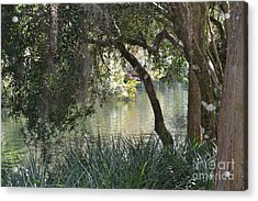 Acrylic Print featuring the photograph Serenity by Carol  Bradley