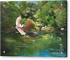 Serenity Acrylic Print by Carol Sweetwood