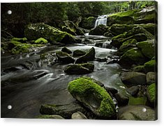 Acrylic Print featuring the photograph Serenity  by Julie Andel