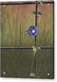 Serenity Acrylic Print by Mary Ann King