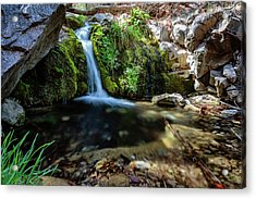 Serenity Personified Acrylic Print