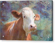 Acrylic Print featuring the mixed media Serious Business by Colleen Taylor