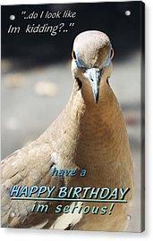 Seriously Happy Birthday  Acrylic Print