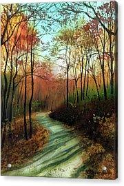 Serpentine Road Acrylic Print