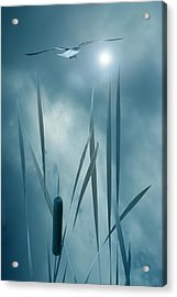 Set The Controls For The Heart Of The Sun Acrylic Print