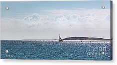 Acrylic Print featuring the photograph Setting Sail by Michelle Wiarda