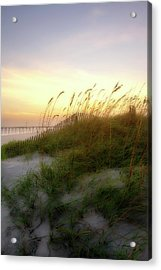 Setting Sun 1 Acrylic Print by Alan Hausenflock