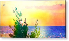 Pastel Colors On The Atlantic Ocean In Cancun Acrylic Print