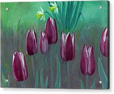 Seven Tulips Acrylic Print by Laurel Ellis