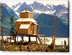 Seward Alaska House Of Stilts Acrylic Print by James BO  Insogna