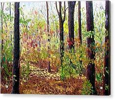 Sewp 7-05 Acrylic Print