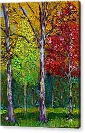 Sewp Fall Acrylic Print by Stan Hamilton