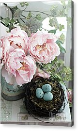 Shabby Chic Peonies With Bird Nest Robins Eggs - Summer Garden Peonies Acrylic Print by Kathy Fornal