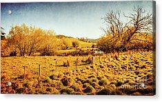 Shabby Country Farmland Acrylic Print