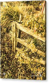 Shabby Garden Details Acrylic Print by Jorgo Photography - Wall Art Gallery