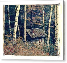 Shack And Birch Trees Acrylic Print