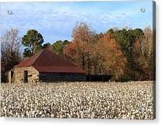 Shack In The Field Acrylic Print