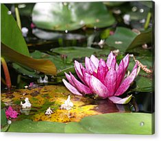 Shaded Lotus Acrylic Print by James Granberry