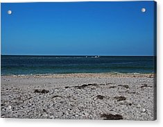 Acrylic Print featuring the photograph Shades Of Blue by Michiale Schneider