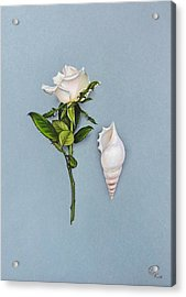 Acrylic Print featuring the drawing Shades Of White by Elena Kolotusha