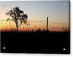 Shadow Binding Acrylic Print by Mark  France