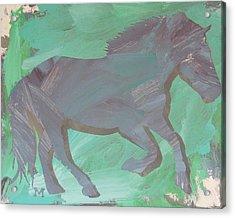 Shadow Horse Acrylic Print