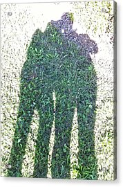 Acrylic Print featuring the photograph Shadow In The Meadow by Wilhelm Hufnagl