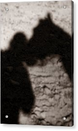 Shadow Of Horse And Girl - Vertical Acrylic Print by Angela Rath