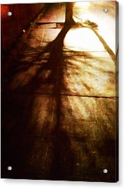 Shadow Of No Doubt Acrylic Print