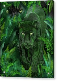 Acrylic Print featuring the mixed media Shadow Of The Panther by Carol Cavalaris