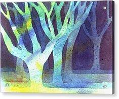 Shadow Trees Acrylic Print by Jane Croteau