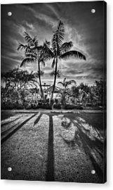 Shadow Waltz Acrylic Print by Evelina Kremsdorf