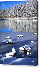 Shadowed Coolness Acrylic Print by Chris Brannen