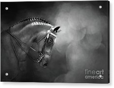 Shadows And Light Acrylic Print by Michelle Wrighton