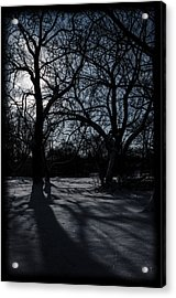 Shadows In January Snow Acrylic Print