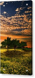 Shadows In The Meadow Right Of The Triple Acrylic Print by Debra and Dave Vanderlaan
