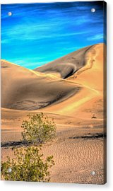 Shadows In The Sand Acrylic Print