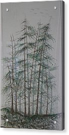 Shadows Of The Forest Acrylic Print by Rick Silas