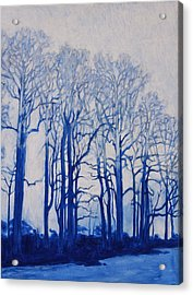 Shadows Of Winter Acrylic Print