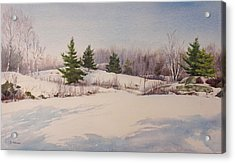 Shadows On Snow In The Canadian Shield  Acrylic Print by Debbie Homewood