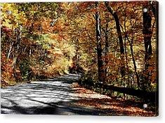 Shadows On The Road Acrylic Print
