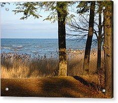 Shadows Over Huron Acrylic Print by Sheryl Burns