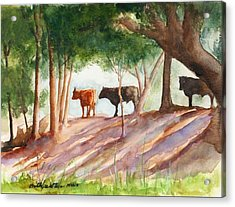Shady Beef Acrylic Print