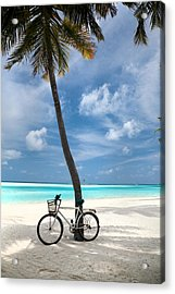 Shady Bicycle Acrylic Print by Sean Davey